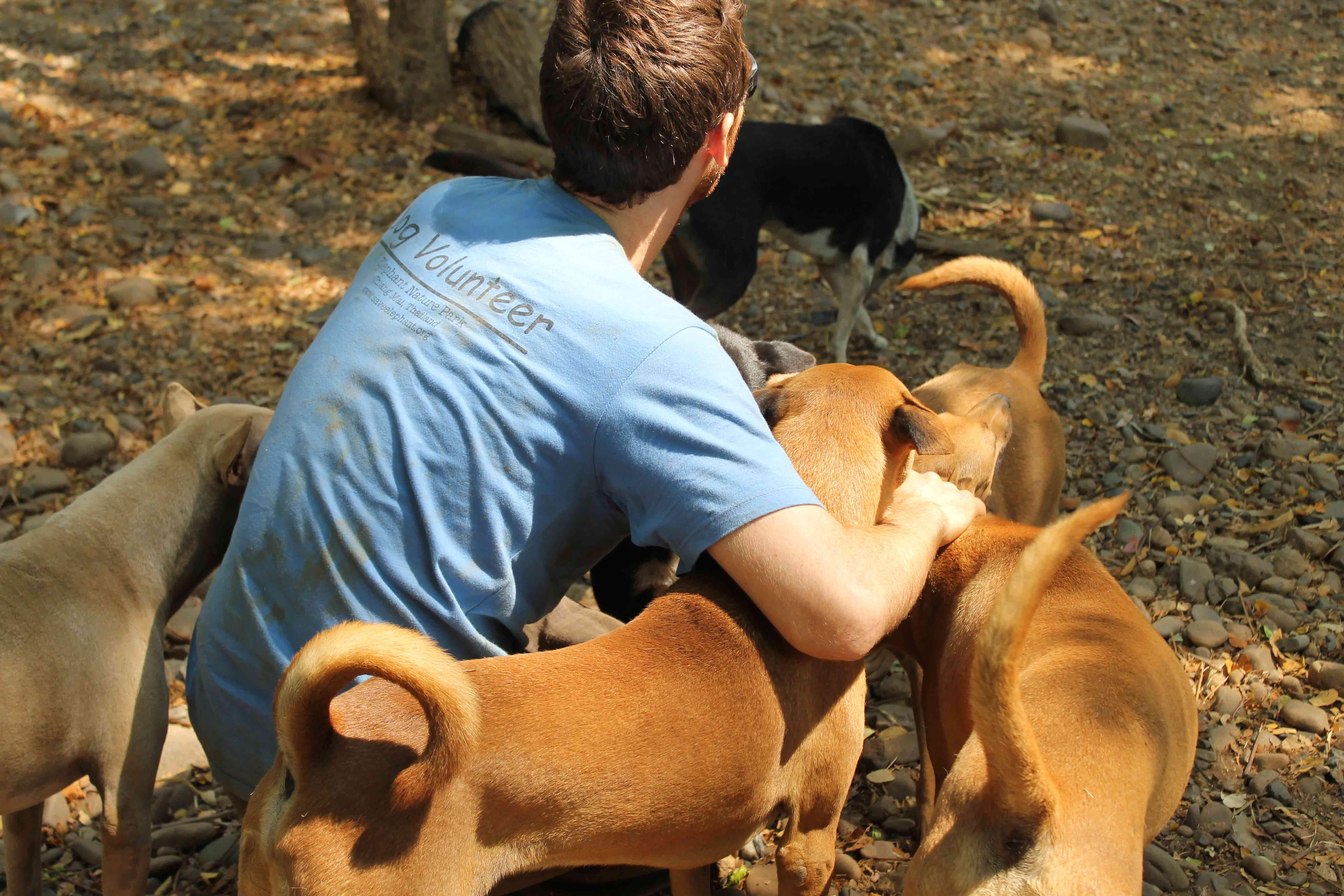 ILLY François, éducateur canin en stage en thaillande à l'elephant nature park